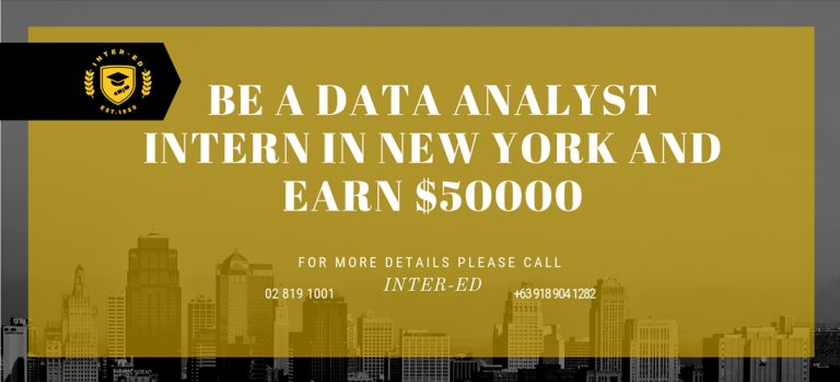 DATA ANALYST to do a 12-month PAID INTERNSHIP IN NEW YORK!